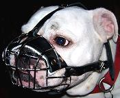 Basket Wire Dog Muzzle Light For English Bulldog
