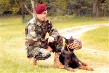 Sargent Major Limp wearing our Leather basket dog muzzle - proud owner Travis Brewer