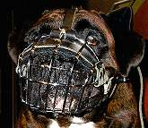 wire dog  muzzle for Boxer