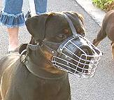 Dog Muzzle Light For Rottweiler