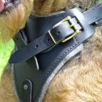 Leather dog harness for agitation,protection and attack.Padded.Designed and Sized to Fit Your Airedale Terrier Just Perfect