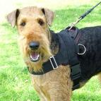 Nylon multi-purpose dog harness for tracking / pulling with extra handle.This harness is widely used by Airedale Terrier owners