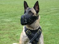 Leather dog harness for agitation,protection and attack.Padded.Designed and Sized to Fit Your Malinois Just Perfect
