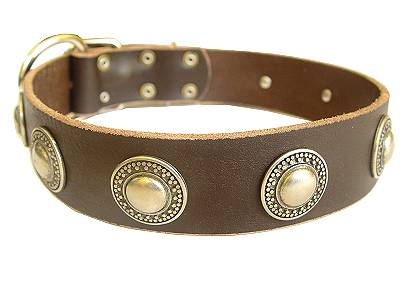 silver conchos dog collar - Handcrafted Leather Dog Collar For Large and Medium Breeds With Silver Conchos