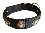 Handcrafted Nylon Dog Collar For Large and Medium Breeds With Silver Conchos
