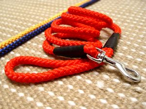 Cord nylon dog leash with super strong solid Nickel plated snap hook