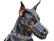 Leather dog muzzle.Padded.Great item for Doberman