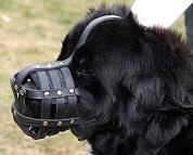 Everyday Light Weight Super Ventilation Newfoundland muzzle - product code : M41