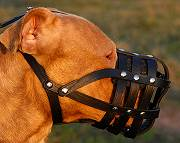 Everyday Light Weight Super Ventilation Pitbull muzzle - product code : M41