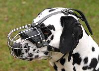 Basket Wire Dog Muzzle Light For Dalmatian