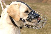 Basket Wire Dog Muzzle Light Padded - Outstanding Value Fits Labrador