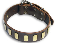 Handcrafted Leather Dog Collar For Large Breeds With Plates