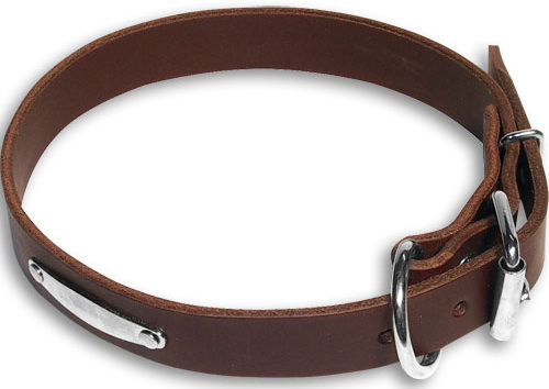 Leather dog collar with id tag