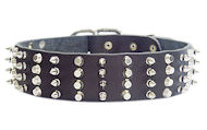 Walking/Training Wide Leather Dog Collar with Nickel Spikes and Pyramids