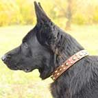 3 Rows Leather German Shepherd Collar with Pyramids and Studs