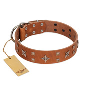 """Dreamy Gleam"" FDT Artisan Tan Leather Dog Collar Adorned with Stars and Squares"