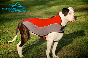 Superb Warm Nylon Dog Coat Harness for American Bulldog Winter Walking