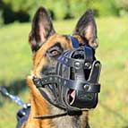 Leather Basket Belgian Malinois Muzzle for Everyday Use