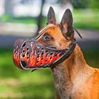 Handpainted Leather Malinois Muzzle with Fire Flames
