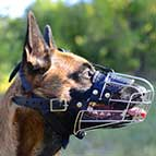 Wire Cage Belgian Malinois Muzzle for Different Activities