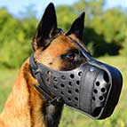 "Leather dog muzzle ""Dondi"" PLUS style For Malinois - M55MAL"