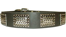 Wide Leather Dog Collar with Massive Curved Plates - Training and Walking Accessory