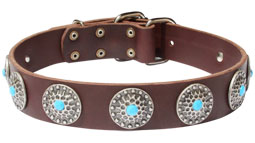 Gorgeous Wide Tan Leather Dog Collar - Fashion Exclusive Design - Special33bluestones_2