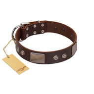 """Stone Stars"" Stylish Handmade FDT Artisan Brown Leather Dog Collar"