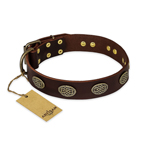'Chocolate kiss' FDT Artisan Leather Dog Collar with Old Bronze Look Oval Plates - 1 1/2 inch (40 mm) wide