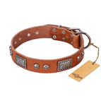 'Sparkling Skull' FDT Artisan Tan Leather Dog Collar with Old Silver Look Plates and Skulls - 1 1/2 inch (40 mm) wide