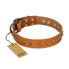 'Autumn Story' FDT Artisan Leather Dog Collar with Old Bronze Look Studs - 1 1/2 inch (40 mm) wide