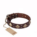 'Golden Square' FDT Artisan Brown Leather Dog Collar with Large Squares - 1 1/2 inch (40 mm) wide