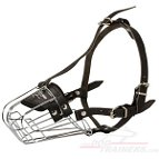 Wire Basket Dog Muzzle - M4light