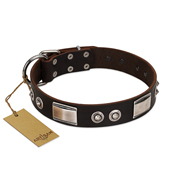 """Baller Status"" FDT Artisan Brown Dog Collar Adorned with a Set of Chrome Plated Stars and Plates"