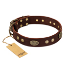'Old-fashioned Glamor' FDT Artisan Brown Leather Dog Collar with Old Bronze Look Plates and Circles - 1 1/2 inch (40 mm) wide