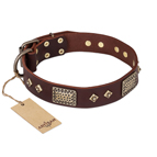 FDT Artisan 'Loving Owner' Decorated Leather Dog Collar with Plates and Studs 1 1/2 inch (40 mm)