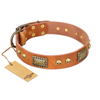 'Saucy Nature' FDT Artisan Tan Leather Dog Collar with Old Bronze Look Plates and Skulls - 1 1/2 inch (40 mm) wide