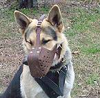"Leather dog muzzle ""Dondi"" style - M5_1"