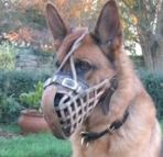 Leather basket dog muzzle - M1_1
