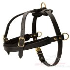 Golden Retriever Pulling/Tracking Leather Dog Harness | Training Supplies