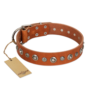 """Gorgeous Roundie"" FDT Artisan Tan Leather Dog Collar with Chrome-plated Circles - 1 1/2 inch (40 mm) wide"