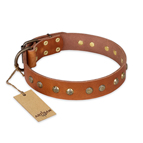 'Spring Flavor' FDT Artisan Adorned Leather Dog Collar with Old Bronze-Plated Engraved Studs 1 1/2 inch (40 mm) Wide