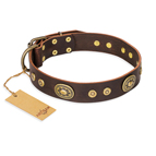 'One-of-a-Kind' FDT Artisan Handmade Decorated Brown Leather Dog Collar