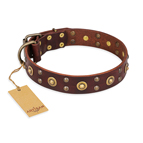 'Caprice of Fashion' FDT Artisan Brown Leather Dog Collar with Round Decorations