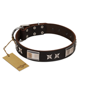 """Satin Beauts"" FDT Artisan Brown Leather Dog Collar with Stars and Plates"