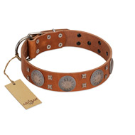 """Sun Rise Noon"" FDT Artisan Tan Leather Dog Collar with Unique Design"