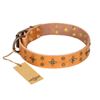 'Top-Flight' FDT Artisan Adorned Tan Leather Dog Collar