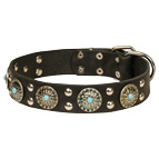 'Ace Style' Leather Dog Collar with Silver-like Decor