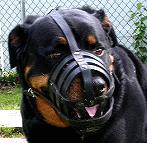 Walking and Training Adjustable Leather Cage Dog Muzzle - Easy to Breathe