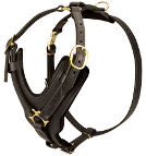 Exclusive Luxury Handcrafted Padded Leather Dog Harness - H10